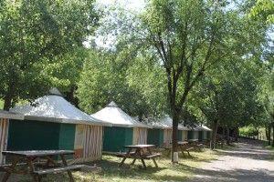 Bengali en Camping Rio vero